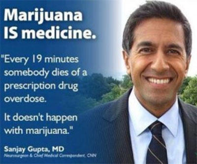 54_2013_sanjay-gupta-wrong-on-med-marijuana