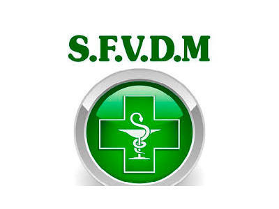 SFVDM PRE-ICO