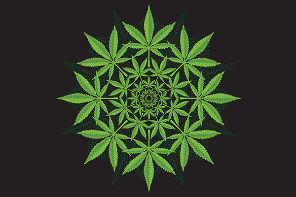 cannabis as medicine